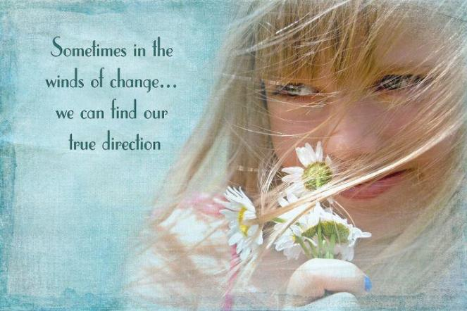 Sometimes in the winds of change we can find our true direction