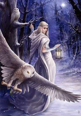 'Midnight Messenger' by Anne Stokes